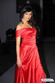 Sonal Chauhan Gallery Hd Picture 20 Glamsham Com