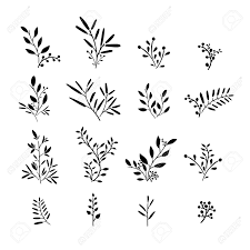 set of monochrome plant elements bouquets kits ornaments of