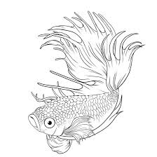 deviantart more like wind fish lineart by joshukun graphics
