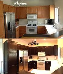 Birch Kitchen Cabinets Dark Stained Kitchen Cabinets U2013 Colorviewfinder Co