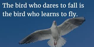 birds quotes unique quotes about birds inspirational picture