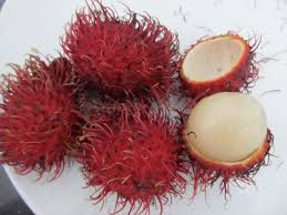 fruit similar to lychee colorful exotic fruit in tropical asia soul travelers 3