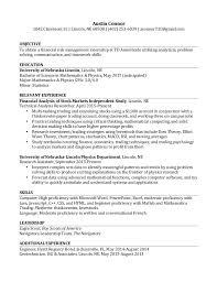 inspiring risk management resume 45 in free online resume builder