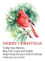 cardinal merry wishes card for birthday