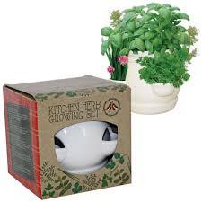 Kitchen Herb by Wilko Kitchen Herb Pot Set At Wilko Com