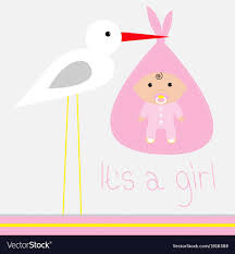 baby shower card baby shower card with stork its a girl royalty free vector