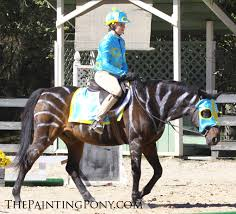 Horse Jockey Halloween Costume 10 Halloween Horse Show Costume Ideas U0027ll Love Painting Pony