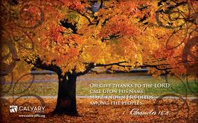 photo collection thanksgiving desktop wallpaper screensavers