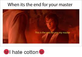 This Is The End Meme - when its the end for your master this is the end for you my master
