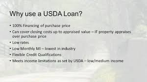 Usda Rual Development by Rural Development Loan Low Rates Payday Loans