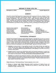 Auditor Resume Sample Download Internal Resume Haadyaooverbayresort Com
