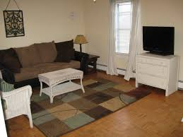Rugs For Living Room Ideas by Apartment Cream Modern Apartment Living Room Cool Apartment