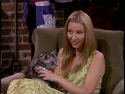 friends apartment number the one with the cat friends central fandom powered by wikia
