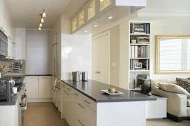 small kitchens ideas recessed wood doors minimalist stained wood