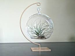 diy terrarium or table decoration hanging glass globe with gold