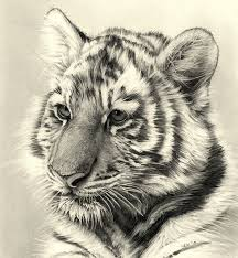 232 best paintings drawings illustrations images on pinterest
