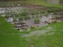 Backyard Water Drainage Problems The Backyard Guru Drainage Problems Keeping Your Yard U0026 Garden
