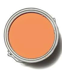 orange paint decorating with orange orange paint colors carrot sticks and