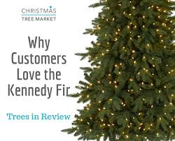 trees in review kennedy fir artificial christmas trees