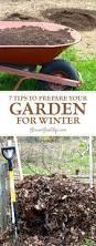 7 tips to prepare your vegetable garden for winter vegetable