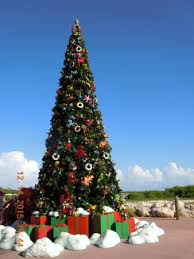 christmas tree on dock picture of castaway cay sandy point