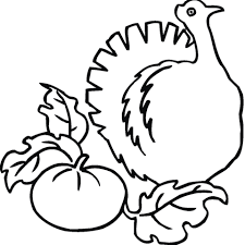 pumpkin turkey coloring free printable coloring pages