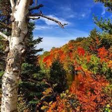 picture perfect michigan fall color tour michigan scenic route