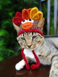 cat hat costume the thanksgiving turkey hat for cats and small