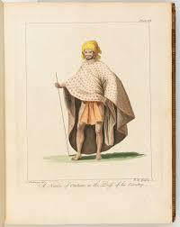 native plants of the sydney region sydney parkinson captain cook u0027s voyages of discovery stories