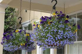 Small Home Garden Ideas Home Design Best Home Gardens A Pathway To Gardening World Home