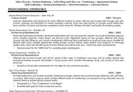 Best Sales Resume Format by Professional Sales Resume Examples Sample Resume For Sales