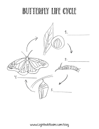 lightbulb books butterfly life cycle poems u0026 coloring page