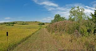 prairie oak ecosystems of the konza prairie trip part 2 u2013 tree and shrub encroachment the