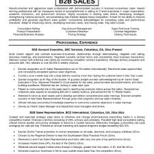 Outside Sales Resume Example by Erp Sales Resume