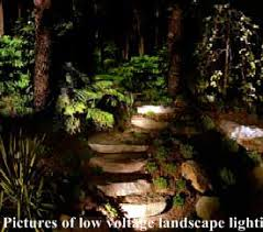 Outdoor Low Voltage Lighting Low Voltage Landscape Lighting Designer Md Outdoor Lighting Co