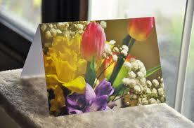 greeting cards u2013 designs by joanna stanek