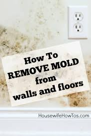How To Prevent Black Mold In Bathroom How To Remove Mold From Walls Housewife How To U0027s