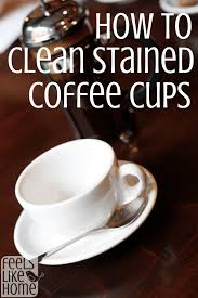 coffe cups how to clean stained coffee or tea cups feels like home
