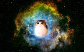 cat universe wallpaper space cat wallpaper iphone cats wallpapers and backgrounds