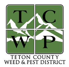 programs natural resources weeds and programs teton county weed and pest