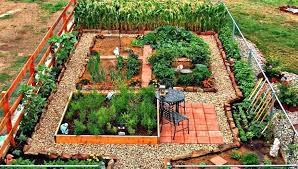 Urban Veggie Garden - urban vegetable gardening tips urban vegetable garden for small
