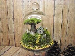 home sweet home decor live moss terrarium miniature plant with