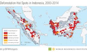 Indonesia On A World Map by New Deforestation Spots In The World U0027s Largest Tropical