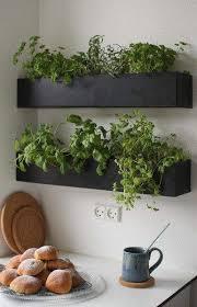 Window Sill Herb Garden Designs 25 Beautiful Kitchen Herb Gardens Ideas On Pinterest Patio Herb