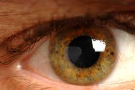 Vitamin A Deficiency Causes Night Blindness Vitamin A And Beta Carotene Vital Nutrients For Full Health