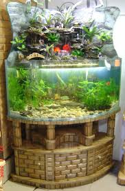 126 best fish bowl images on pinterest aquarium ideas fish feng shui aquarium w yang stones 80 gallons seamless curve angle