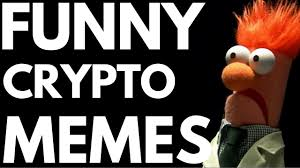 Bitcoin Meme - bitcoin users in a nutshell cryptocurrency meme compilation youtube