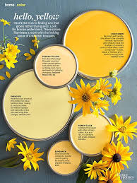 paint palettes yellow paint colors honey glaze and sunflowers