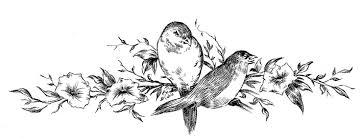 vintage sketches birds on floral branch the graphics fairy