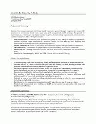 Summary Examples For Resumes by Best 25 Acting Resume Template Ideas On Pinterest Resume